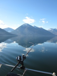 Licensed Fishing Tours