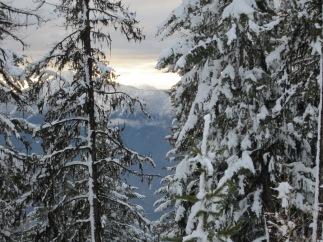 Overlooking Kootenay Lake